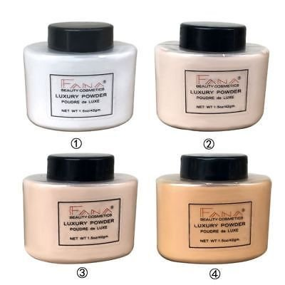 Smooth Loose OilControl Face Highlighter Mineral Powder Concealer