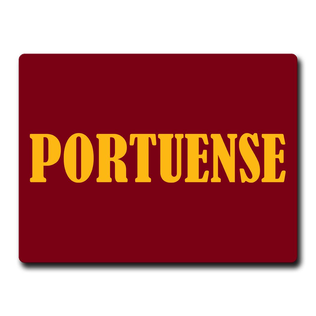 Magnete Portuense