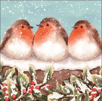 Robins in a Row (Glitter) Cards