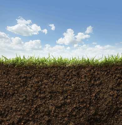 Routine Soil Analysis for Arable/Grassland