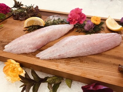Wild Pacific Rockfish Fillet (2-Pack)