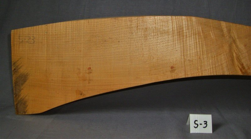 PLR Sugar Maple: 66 1/2