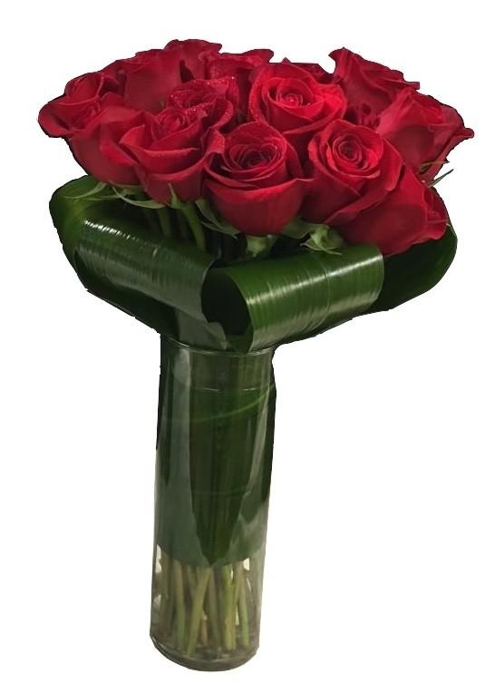 V Red roses