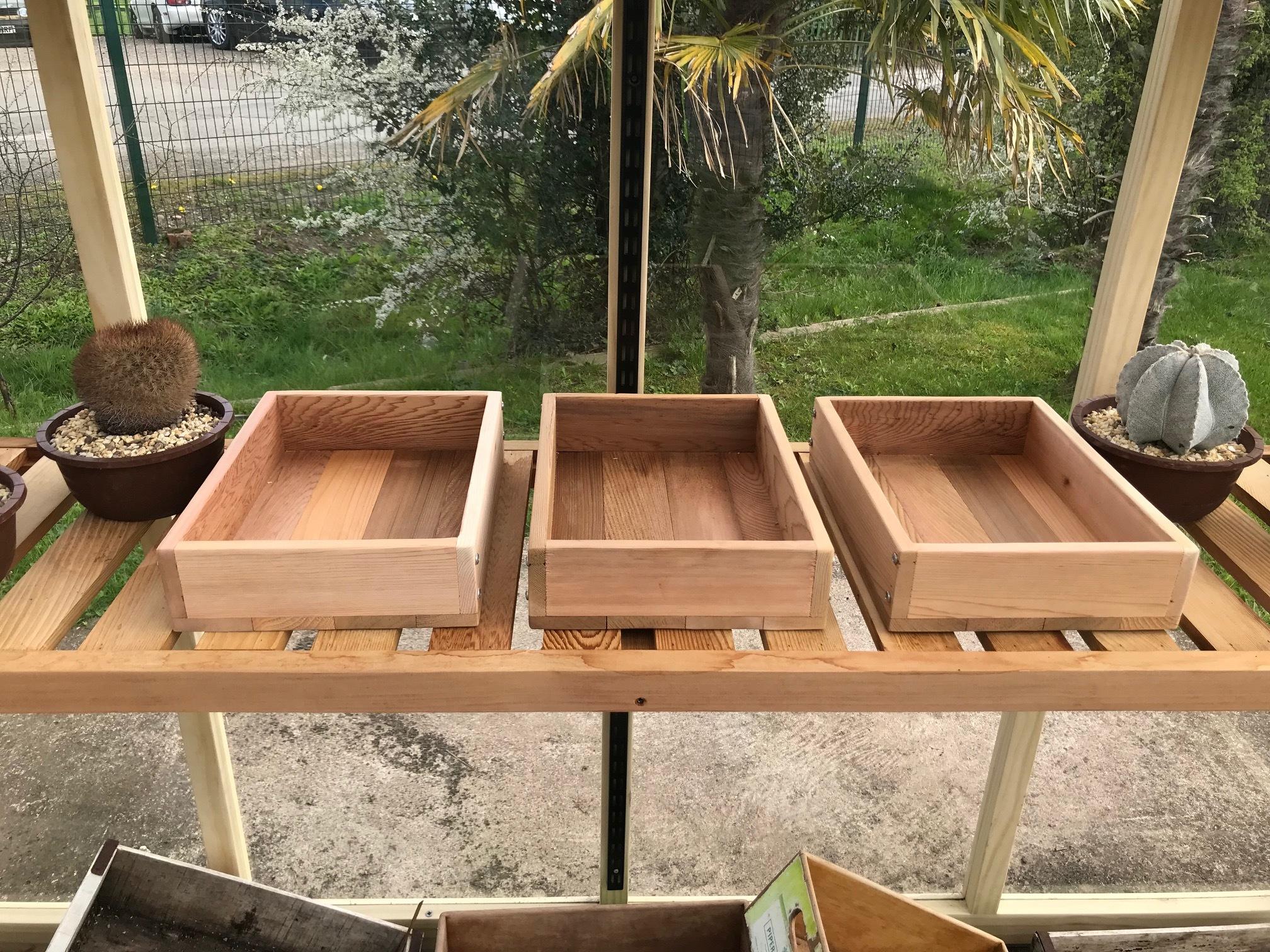 Seed Tray Triple Set 00009