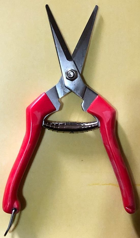 Handy Snips for Root Pruning and Herb Harvesting