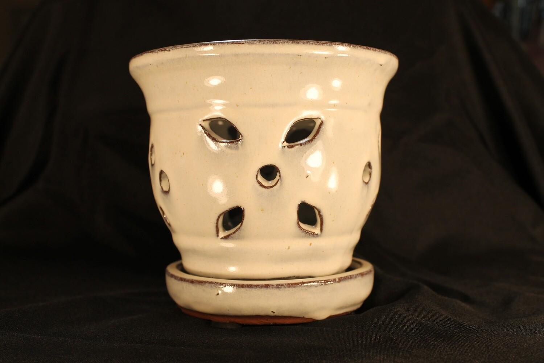 "5"" Round  Decorative Orchid Pot"