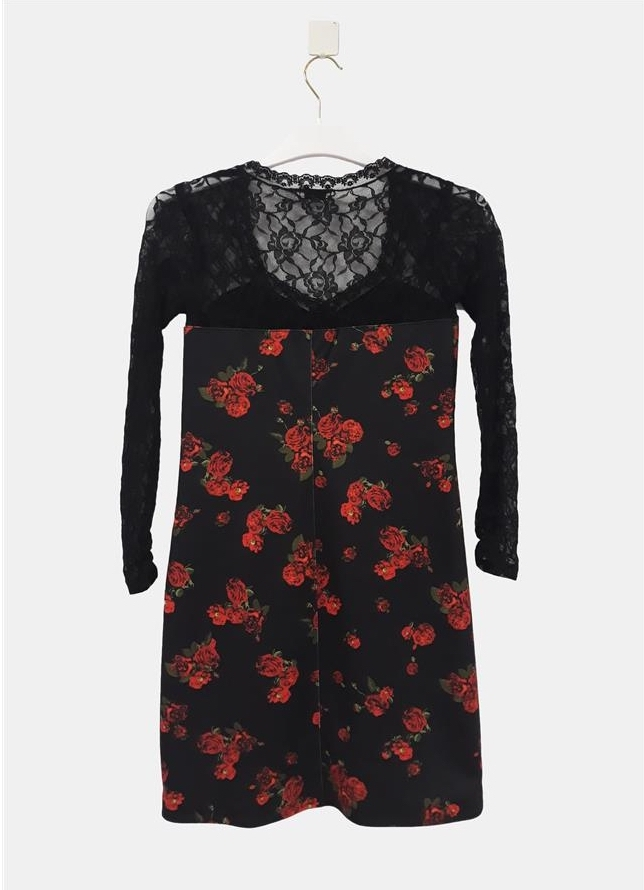 Paul Brial: Baby Roses Lace Decolletage Fitted Dress