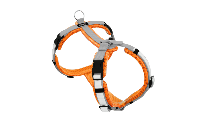 Secure Easy neonorange-silber XL