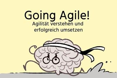 Going Agile - Agilität verstehen und umsetzen: Online-Video-Kurs