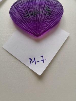 Молд М-7