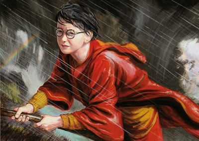 NEW. Harry Potter on broomstick