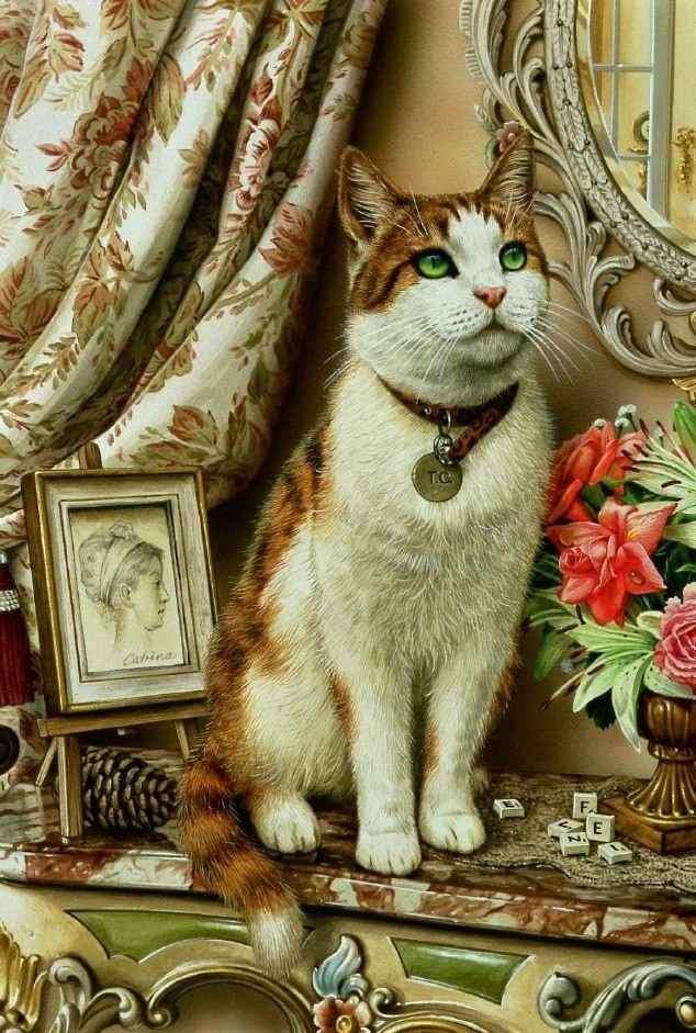 Cat with a medallion