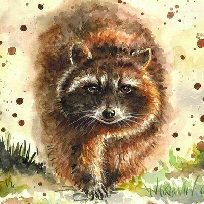 NEW. Raccoon. Енот