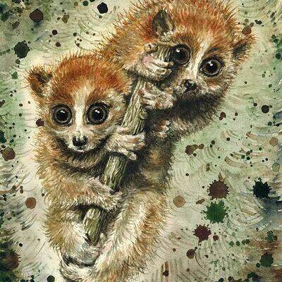 NEW. Lemurs. Лемуры