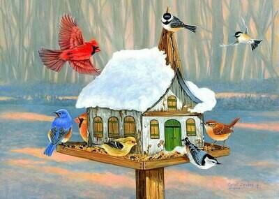 NEW. Birds at the feeding trough