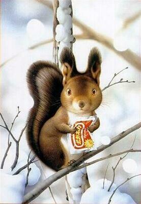 NEW. Squirrel
