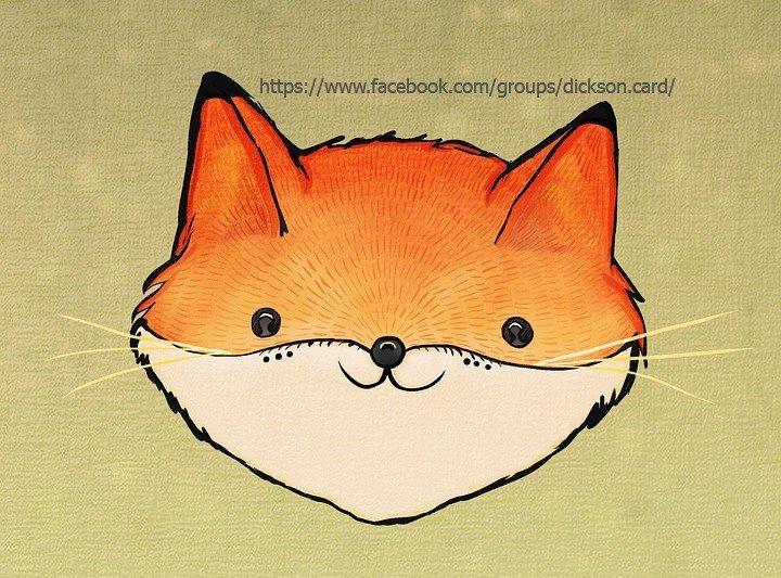 🦊 Snout fox.