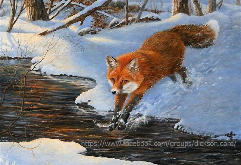 Fox jumps over the creek .