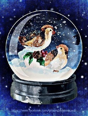 Snowy birds in the ball 🐦