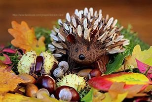Hedgehog crafts