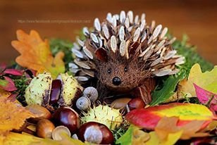 Hedgehog crafts