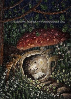 Hedgehog reads in a mink under a mushroom