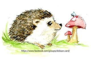 Hedgehog by the mushroom