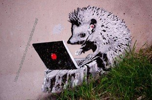 Hedgehog with computer