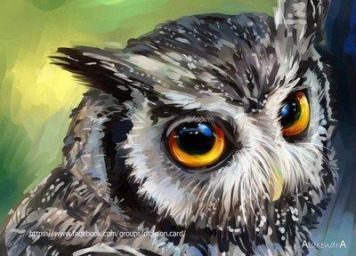 Owl  от