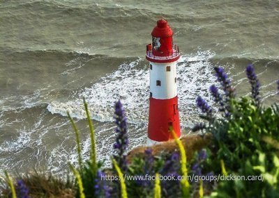 Lighthouse is red white hiding behind flowers