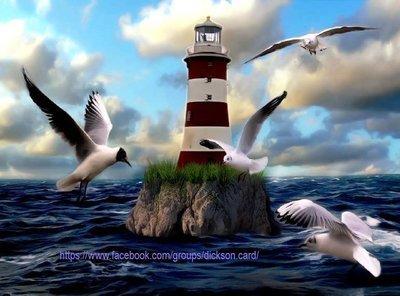 Lighthouse and birds around