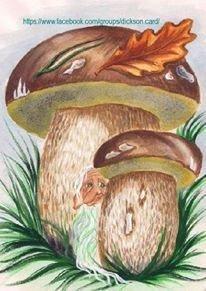 Mushrooms by © Victoria Romanova