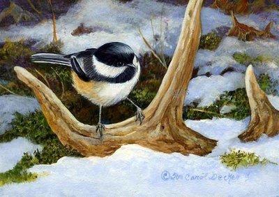Bird on a snag from © Carol Decker