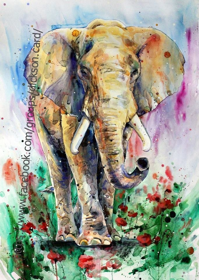 Elephant and poppies by © Elena Shved