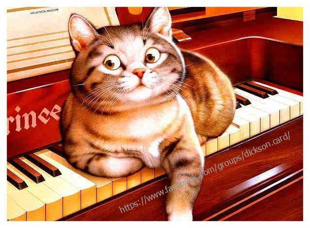 Cat on the piano
