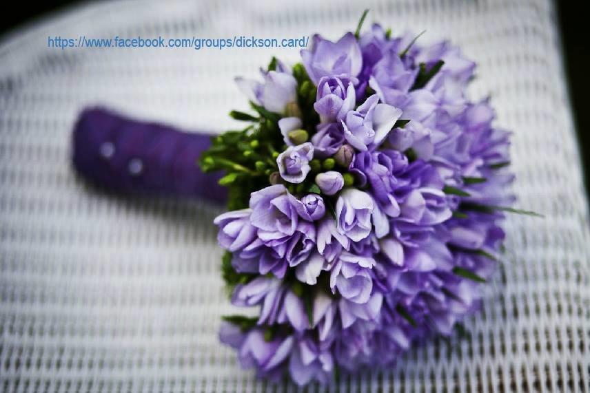 Bouquet lilac