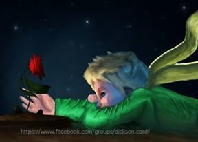 ​Little Prince with a rose