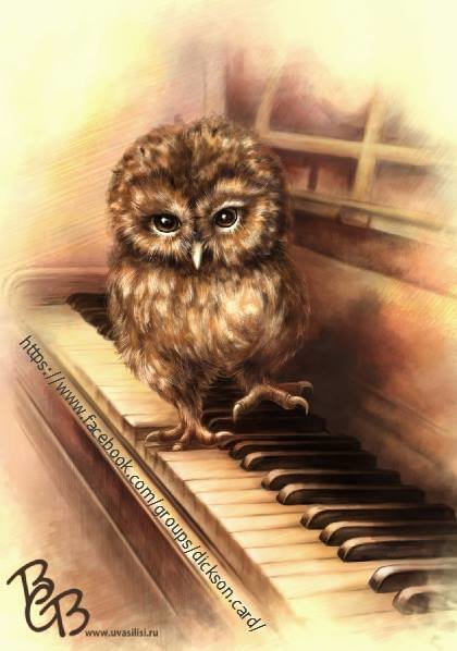 Owl 🐾 on the piano Vasilisa Volkova
