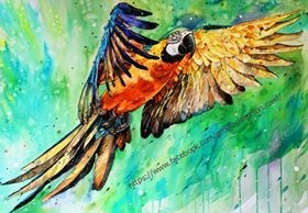 Parrot by © Elena Shved