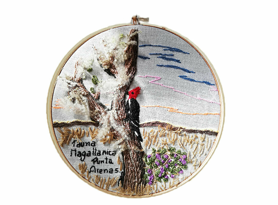 Woodpecker Embroidery / Bordado Pájaro Carpintero