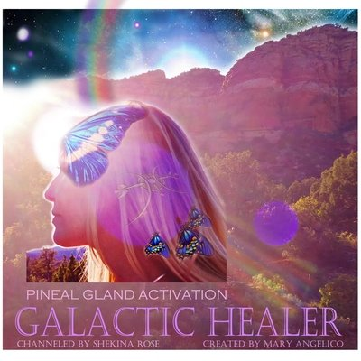 Pineal Gland 3rd Eye Stargate Activation and Galactic Healer