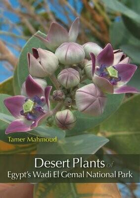 Desert Plants of Egypt's Wadi El Gemal National Park
