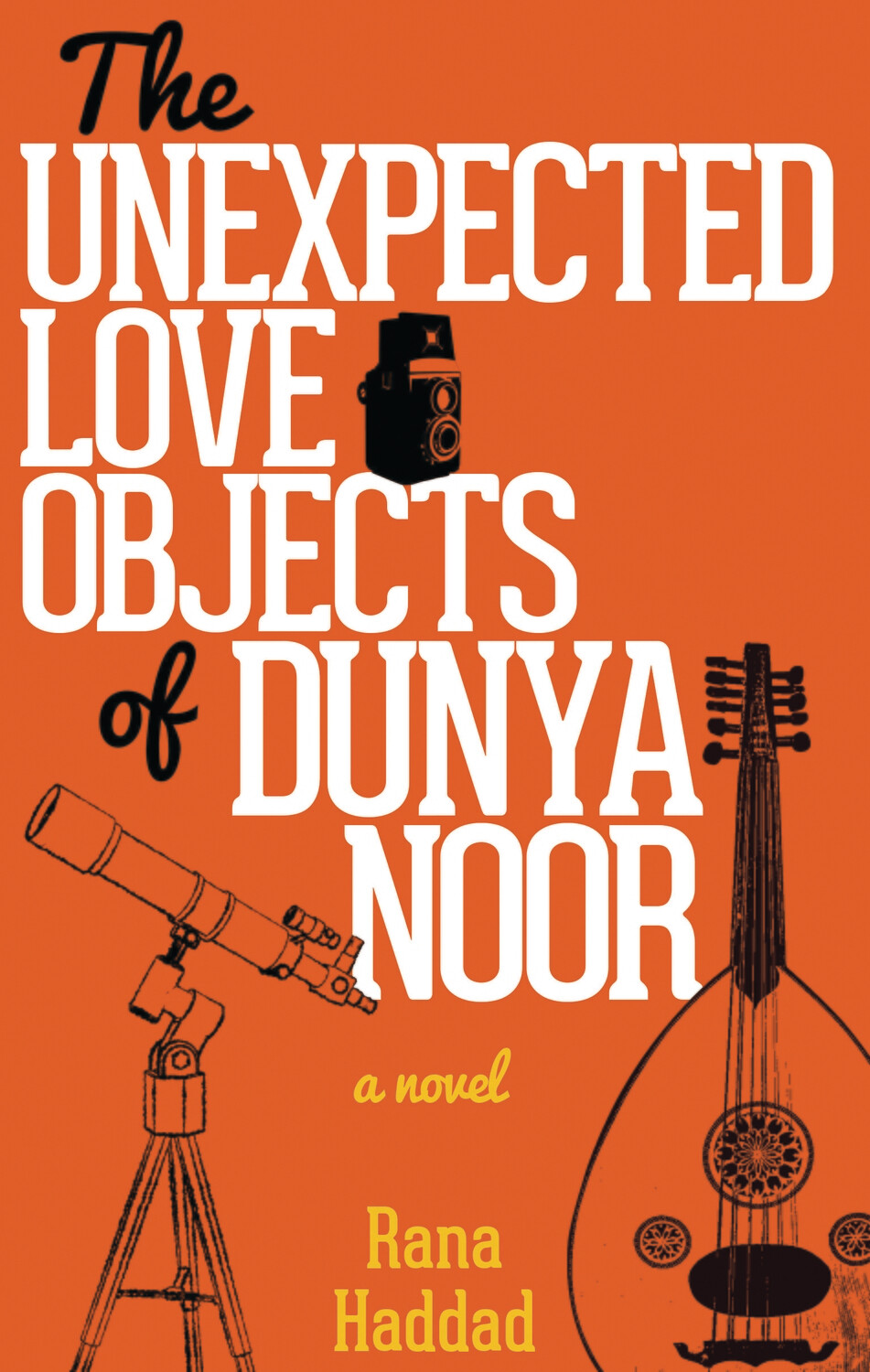 The Unexpected Love Objects of Dunya Noor: A Novel