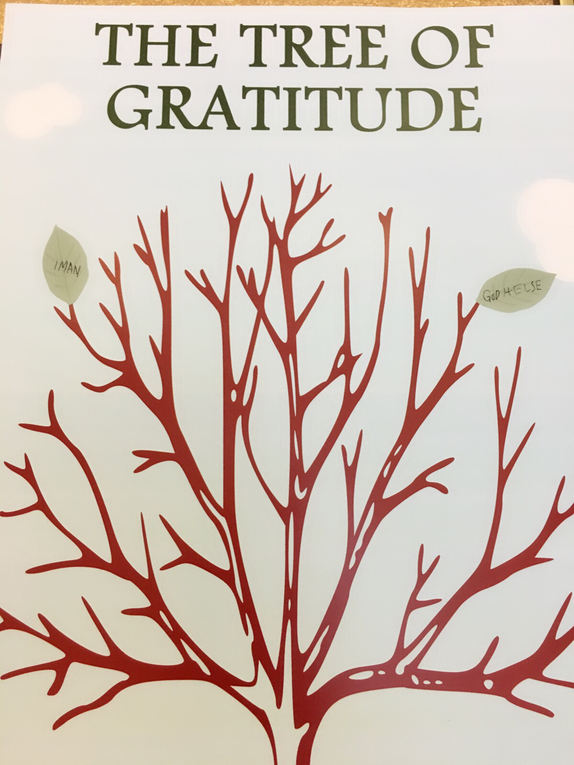 The Tree Of Gratitude