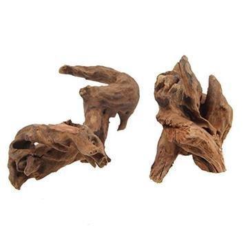 Driftwood 00002