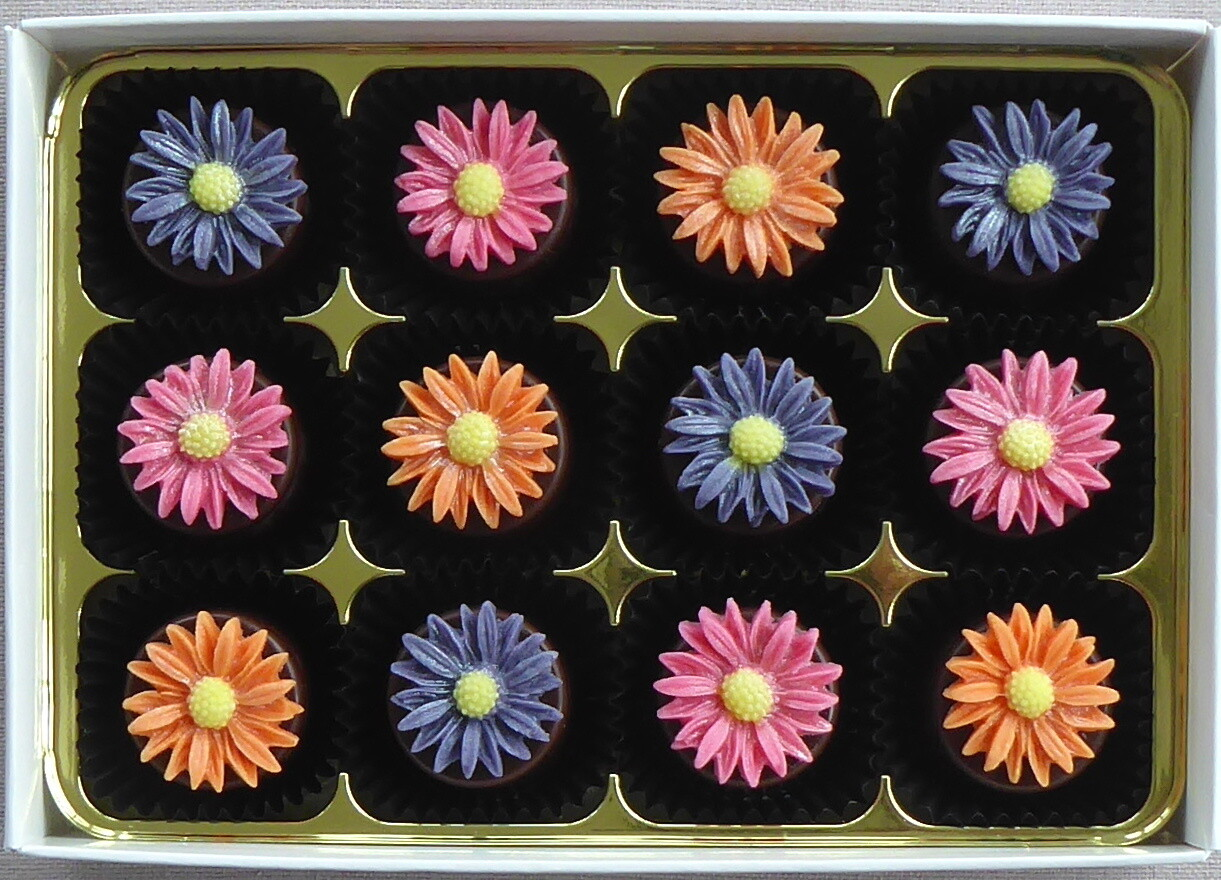 Bright Daisies - marzipan chocolates