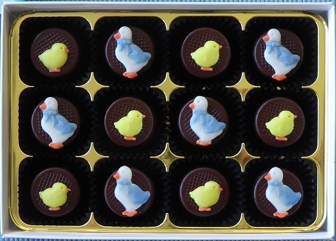 Easter Ducks & Chicks