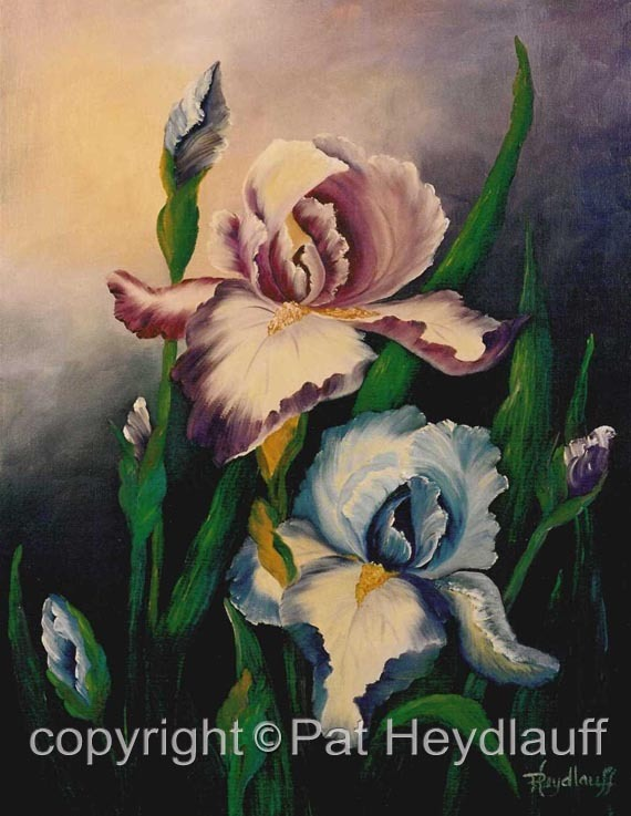 Two Irises CNV136 / 16x20