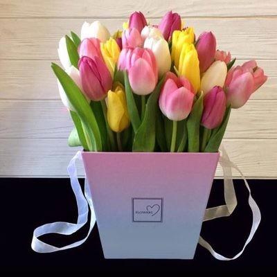 25 тюльпанов в коробочке