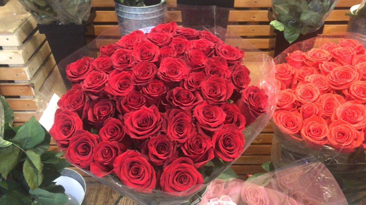 Роза 80 см и более